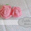cuddle rose h