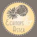Echinops&Aster