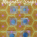 snaps-1